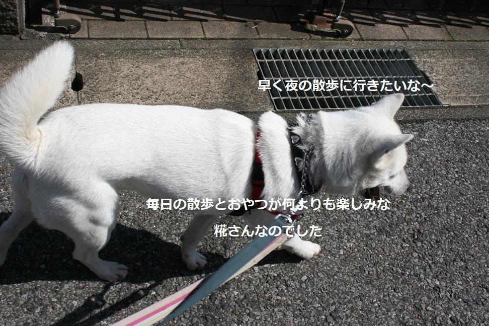 f0242002_17453347.jpg