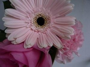 お花のある生活_c0369433_13102553.jpg