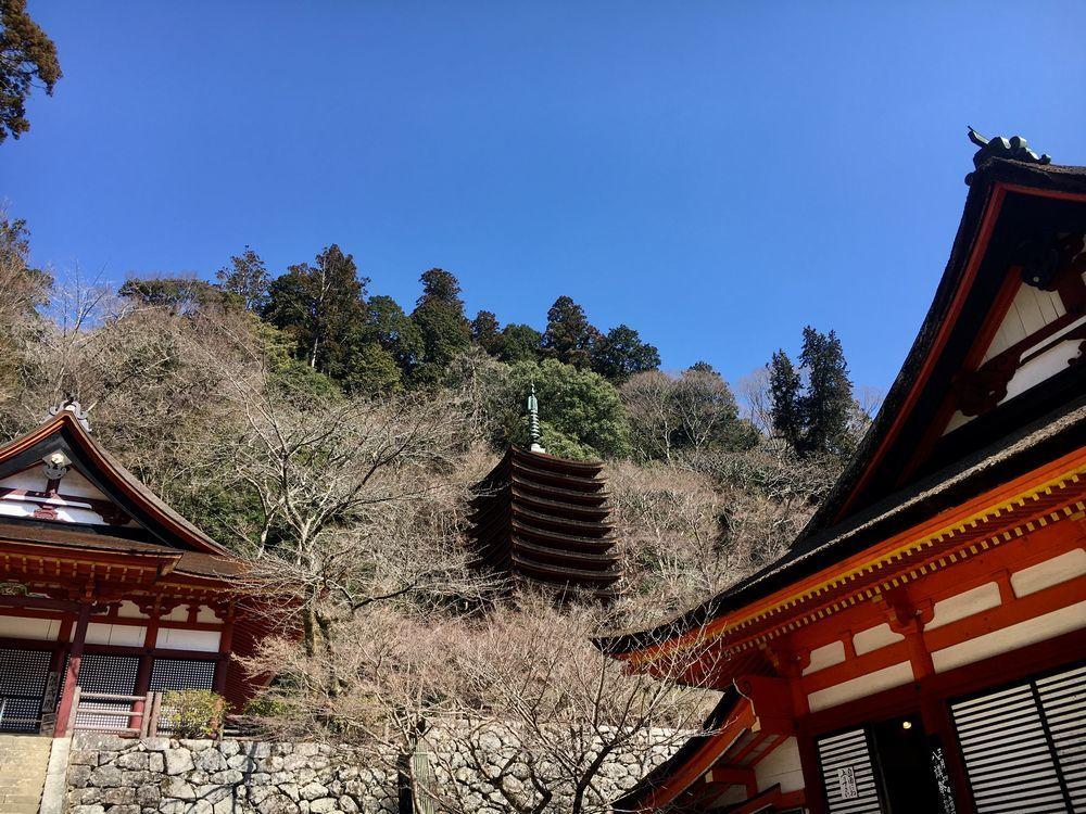 談山神社 八講祭_a0237937_21242287.jpg
