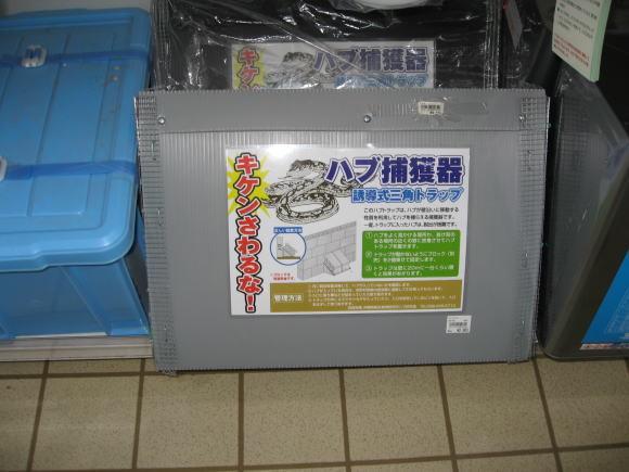 親しみの琉球エアコミューター_a0268377_21430555.jpg