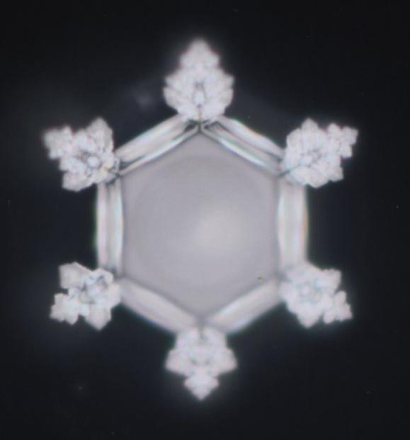 6の神秘と幾何学と女神山命水_e0295926_12143077.jpg