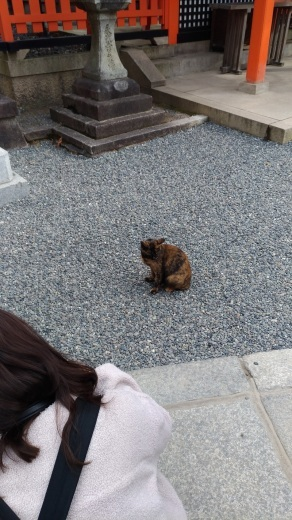 [京都旅行] 三日目 Bパート_a0054041_13310797.jpg