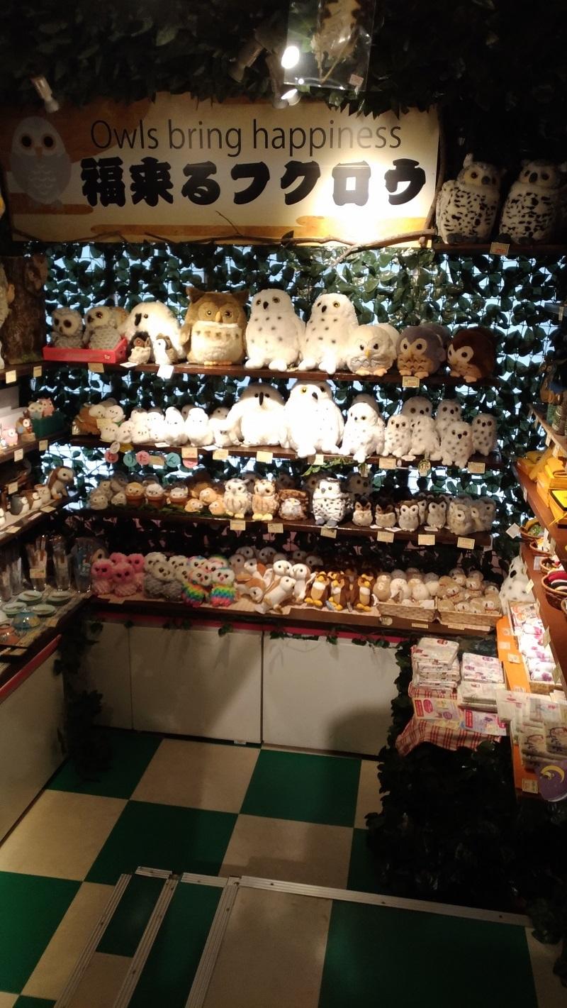 [京都旅行] 三日目 Cパート_a0054041_13575161.jpg
