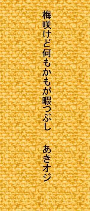 f0117041_16324786.jpg