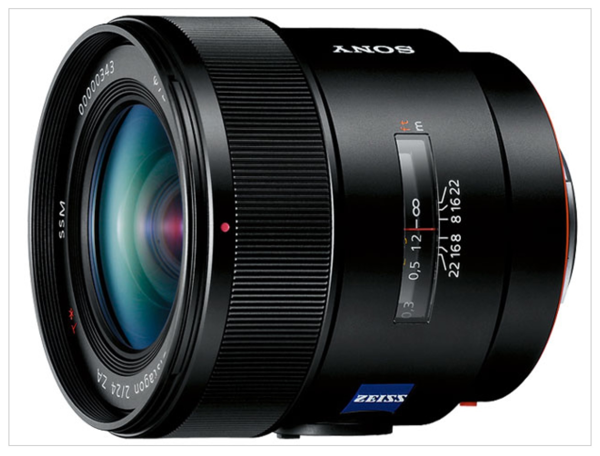 α350とDistagon T* 24mm F2 ZA SSMで撮る湘南_e0341572_14423440.jpg