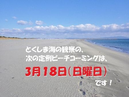 b0353578_21411143.jpg