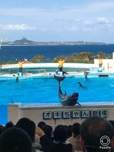 沖縄2 美ら海水族館_a0059035_12191292.jpg