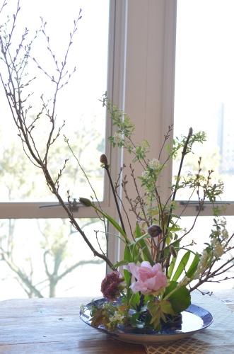 桜の季節がやってきます_d0139350_22065395.jpg