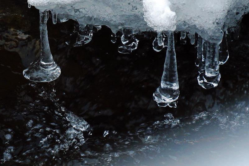 寒い朝_d0162994_11271852.jpg
