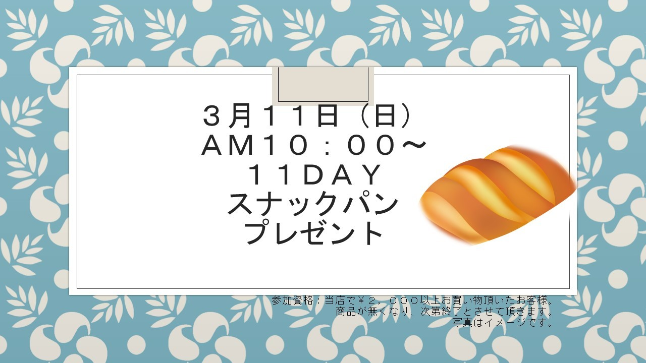 180307 11DAYイベント告知_e0181866_11564636.jpg