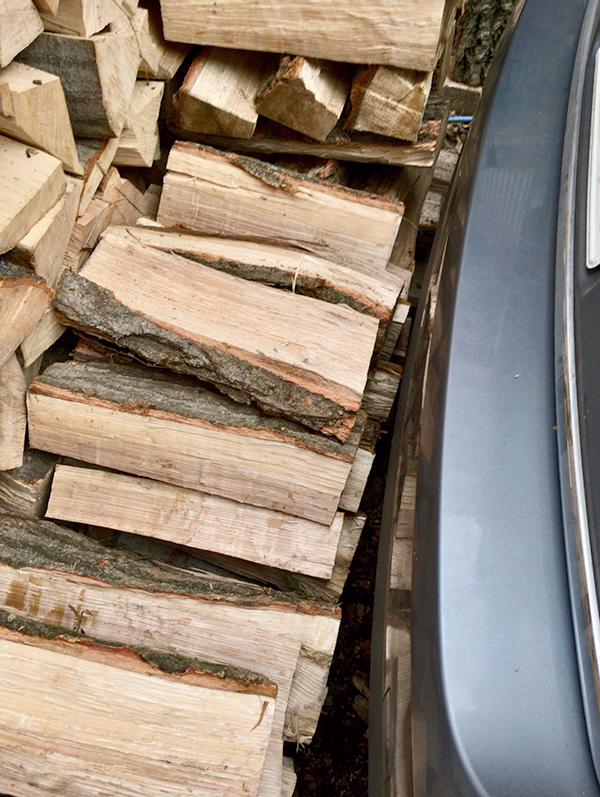 5回目の薪運びで薪棚はほぼ満タンになりました。_b0038919_10332461.jpg