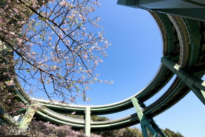 【ループ橋/伊豆スカイライン】_f0348831_05552773.jpg
