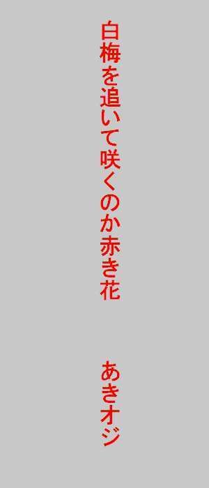 f0117041_04390045.jpg
