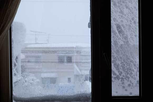 気温差、激しすぎ_e0220159_10595256.jpg