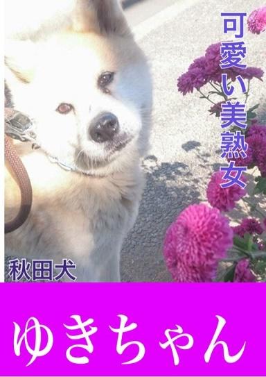 f0121712_09295566.jpg