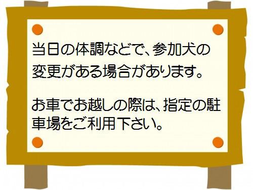f0121712_10323937.jpg