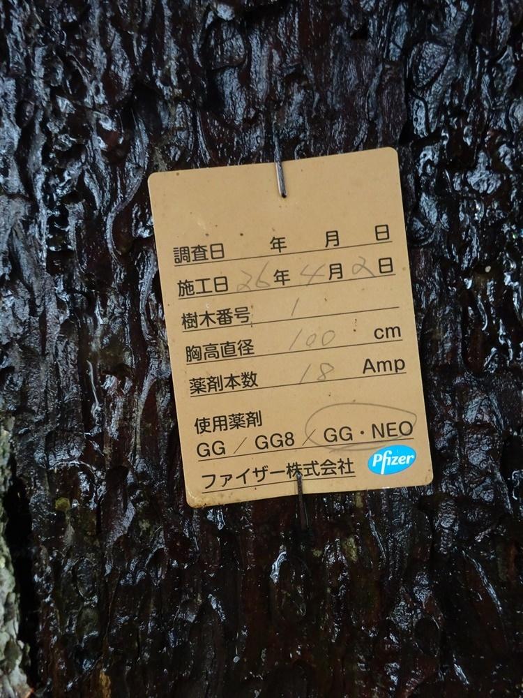 大雨 支部総会に_c0111229_18122252.jpg