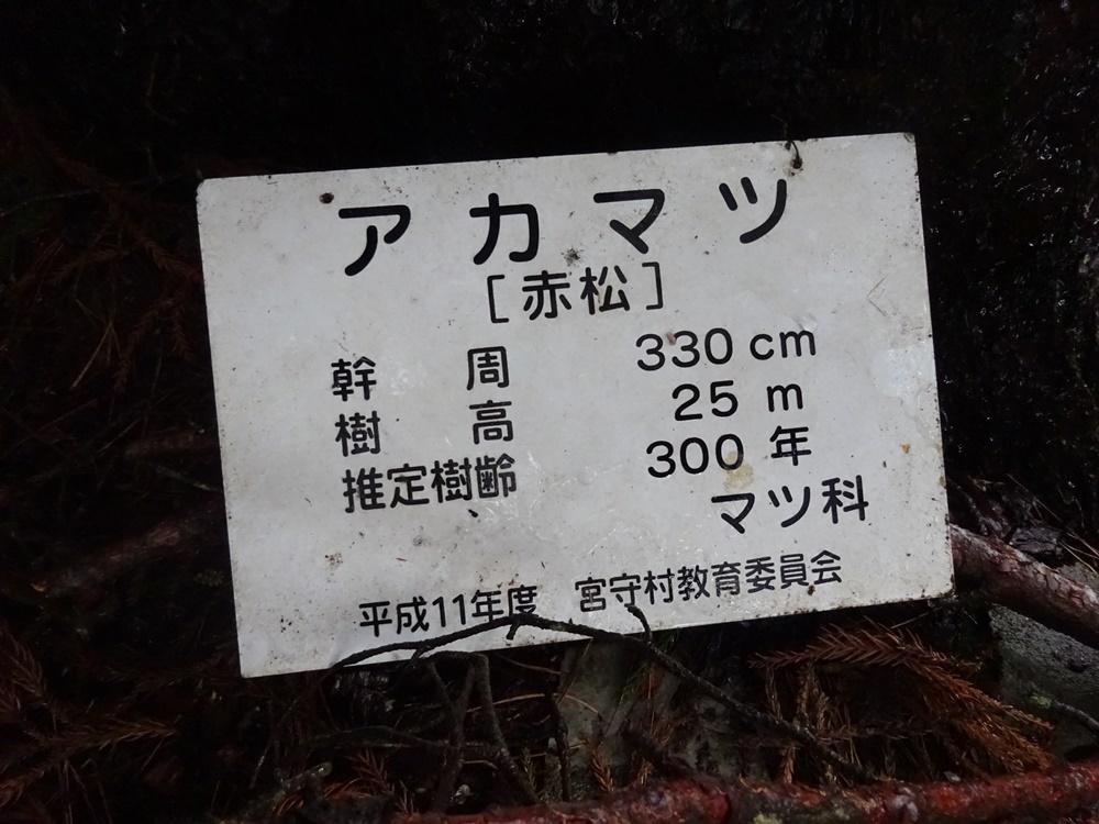 大雨 支部総会に_c0111229_18123030.jpg