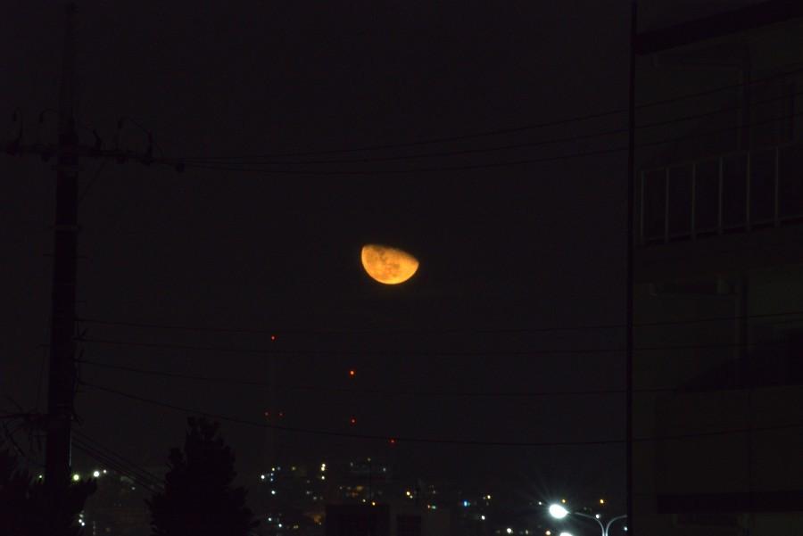 深夜の月の出_a0095470_23375204.jpg