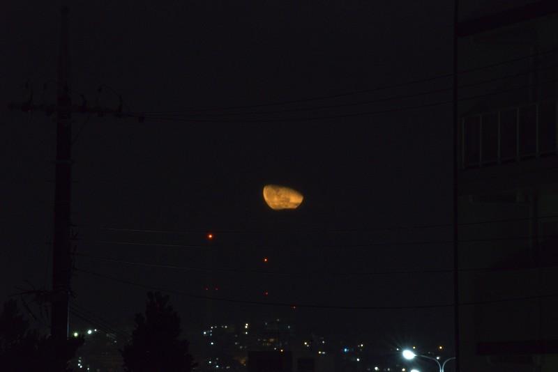 深夜の月の出_a0095470_23375864.jpg