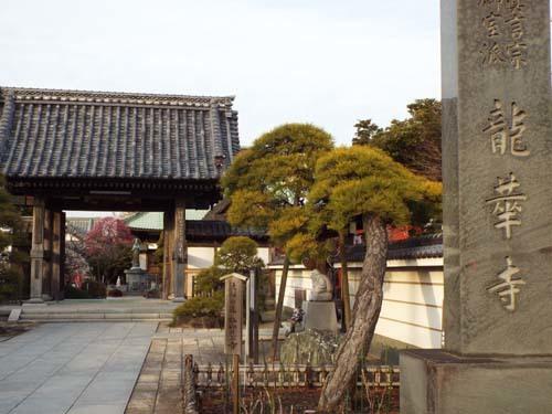 金沢文庫「運慶」展まで見たこと_f0211178_13024638.jpg