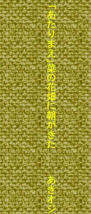 f0117041_03435891.jpg
