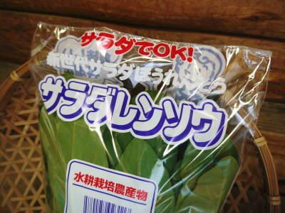 美味しいサラダ食べてますか?農薬を一切使用しない「水耕栽培の生野菜」大好評発売中!_a0254656_18244192.jpg
