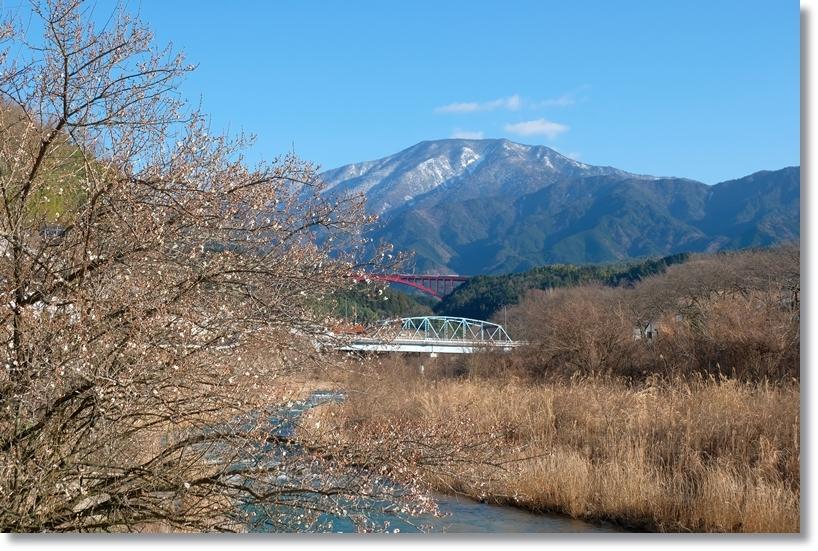 恵那山_c0054876_16435852.jpg