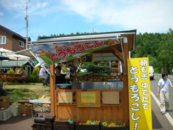 お花畑!_a0268377_21370046.jpg