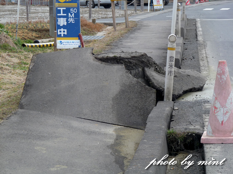 東日本大震災 今日で7年!癒された「ハヤブサ」さん♪今回の雪の中の「ミコアイサ」さん♪_e0218518_19341034.jpg
