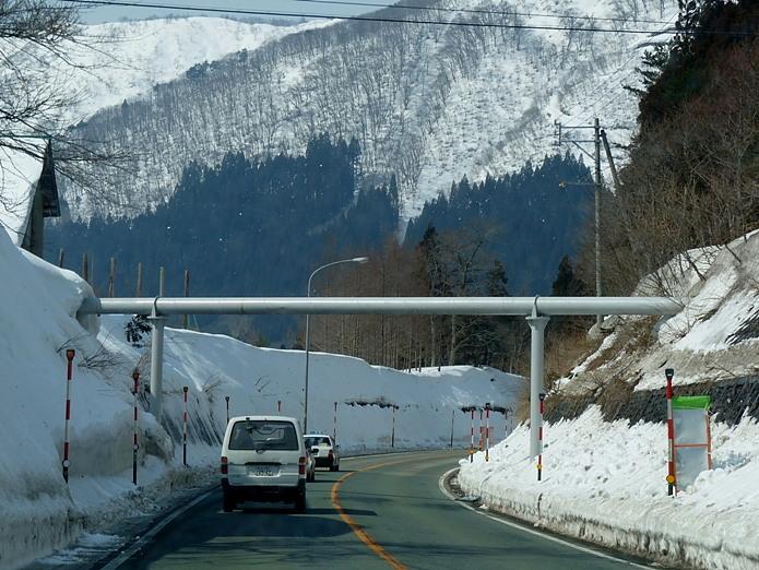 東日本大震災 今日で7年!癒された「ハヤブサ」さん♪今回の雪の中の「ミコアイサ」さん♪_e0218518_19344386.jpg