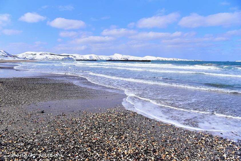 雪溶けからのビーチコーミングとヘンプ_e0120026_10493474.jpg