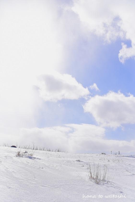 雪溶けからのビーチコーミングとヘンプ_e0120026_10533304.jpg