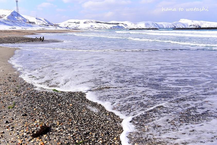 雪溶けからのビーチコーミングとヘンプ_e0120026_10570187.jpg