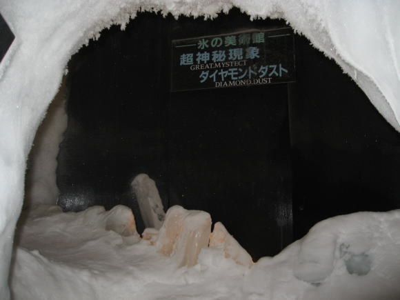 マイナス41℃の体験!_a0268377_12372862.jpg