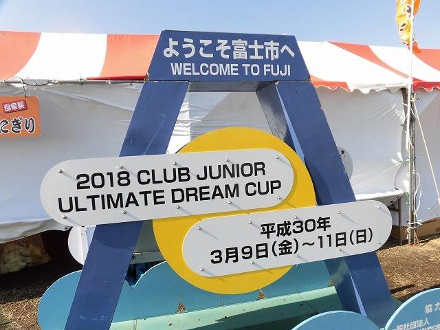 世界選抜チームの迫力とレベルに圧倒! アルティメットの「2018ドリームカップ」_f0141310_07212031.jpg