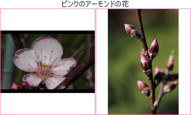 f0354923_23082925.jpg