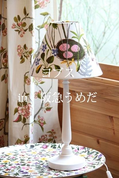 b0119037_10405742.jpg