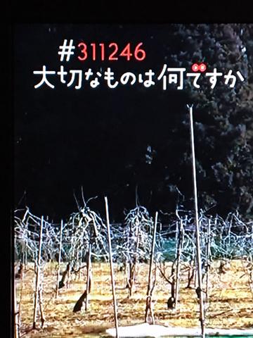 d0245357_11312824.jpg