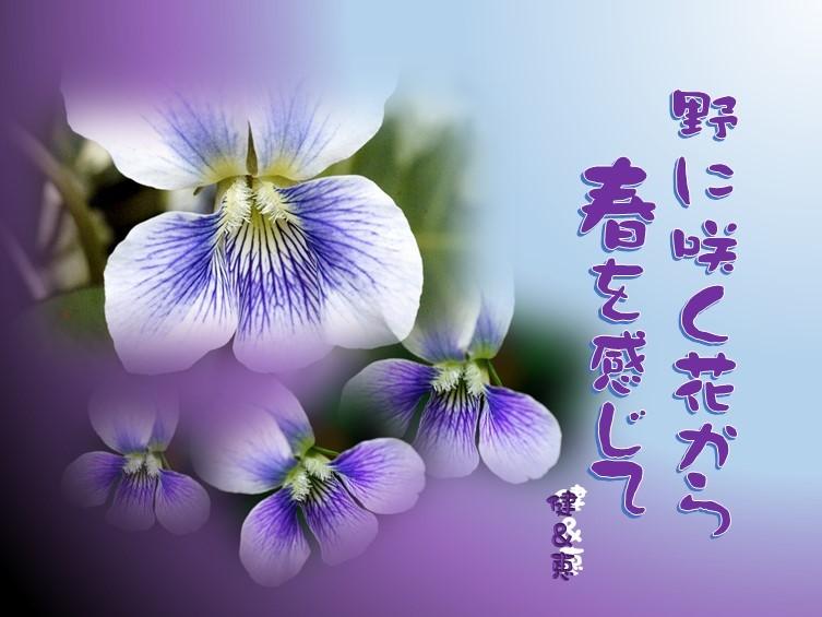 f0214467_10250380.jpg