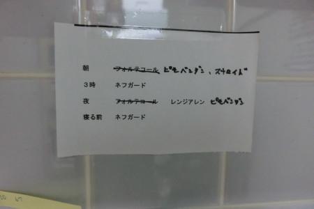 b0193480_19502007.jpg