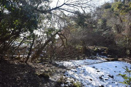 2018年1月29日 千葉房州の山、高宕山へ_c0242406_13073918.jpg