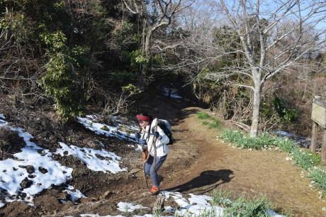 2018年1月29日 千葉房州の山、高宕山へ_c0242406_13093302.jpg