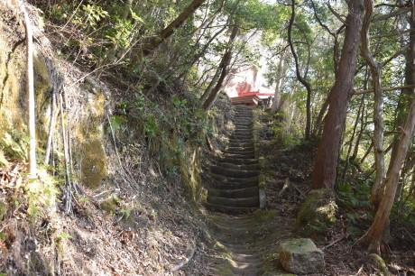 2018年1月29日 千葉房州の山、高宕山へ_c0242406_16120379.jpg