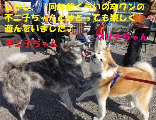 f0121712_15201602.jpg