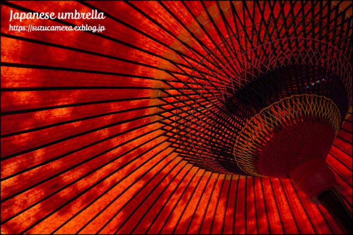 赤い和傘_f0100215_01325747.jpg