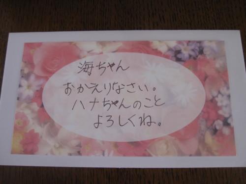 海ちゃんと健太の三回忌 続き_e0350927_10021126.jpg