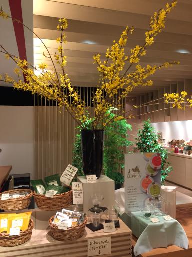 桜の紅茶_c0223630_10421144.jpg