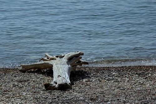 *海を見にいきました*_b0328557_19053351.jpg