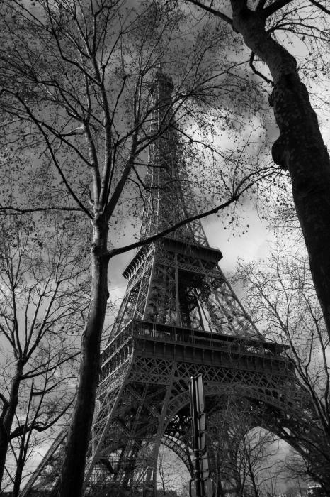 Tour Eiffel !!_d0349265_11594997.jpg
